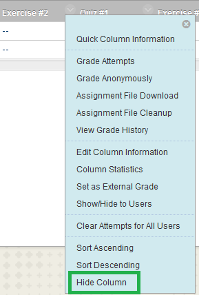 Hide Column From Instructor View Option