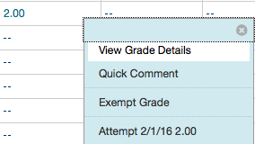 Blackboard grade center view details button