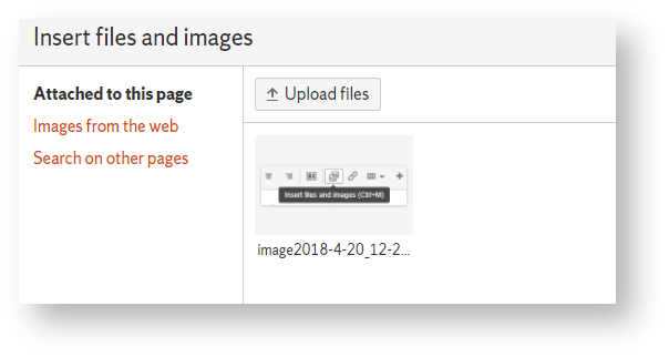 Depicts the Insert files and images properties page.