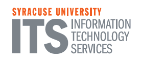 Information Technology and Services Text Logo